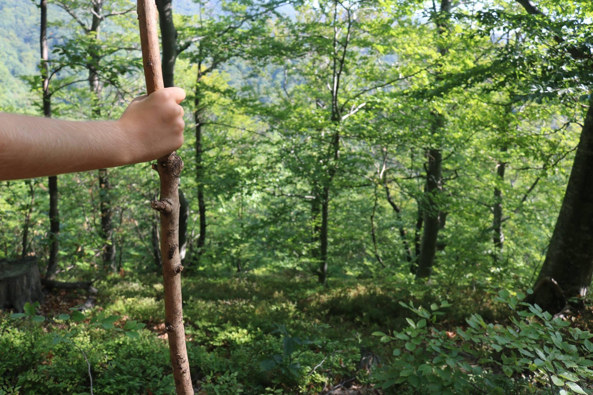 planinarenje za djecu praktikum zagreb